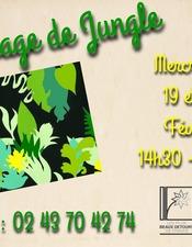 FMA-paysage-de-jungle