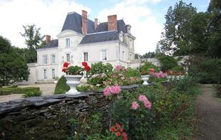 CHAMBRES D'HOTES DU CHATEAU DE MIRVAULT - Château-Gontier-sur-Mayenne