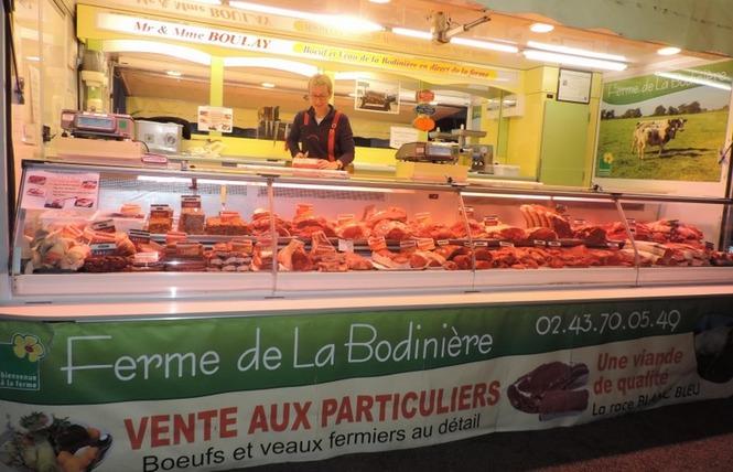 BOEUF DE LA BODINIÈRE 1 - Prée-d'Anjou