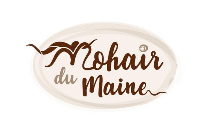 MOHAIR DU MAINE 1 - La Bazouge-de-Chemeré