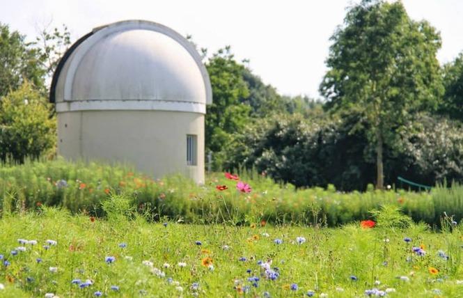OBSERVATOIRE M53 MAYENNE ASTRONOMIE 1 - Maisoncelles-du-Maine