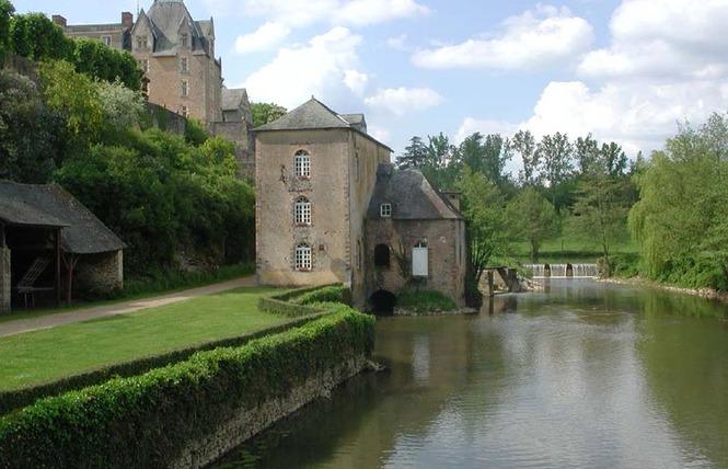 MOULIN DE THEVALLES 1 - Chémeré-le-Roi
