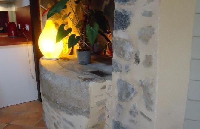 GITE DE LA BAIGNADE NATURELLE 11 - Niafles